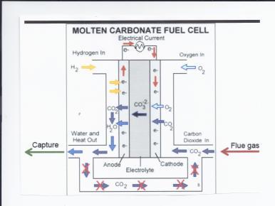 FuelCellEnergy